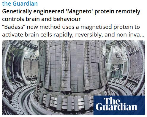 Proteine genetiquement modifié